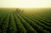 Farming/Annual Report